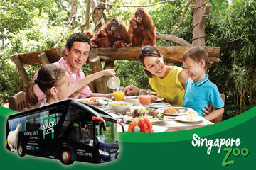 Zoo (Optional Breakfast with Orangutans) and 2-Way Safari Gate City Transfer
