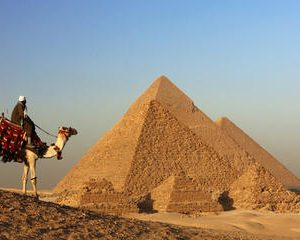Day Tour to the Giza Pyramids,Saqqara and Memphis