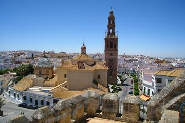 Private Full Day Tour of Carmona and Seville from Seville