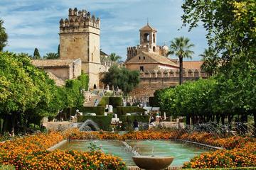 Private Full Day Tour of Cordoba & Medina Azahara