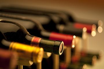 Wine Tasting and Flamenco Master Class in Madrid
