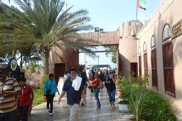 Abu Dhabi Private Tour per group