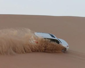 Abu Dhabi Ultimate Desert Safari in the Empty Quarter 4WD Adventure & Wild Life