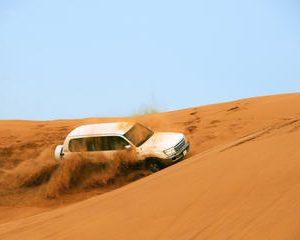 Dubai Desert Safari: Al Hibab Dune-Bashing and Arabic BBQ Dinner