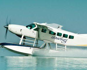 Dubai Private Discovery Tour and Seaplane Tour